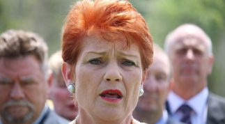 Is Pauline a champion for neglected Aussie battlers?